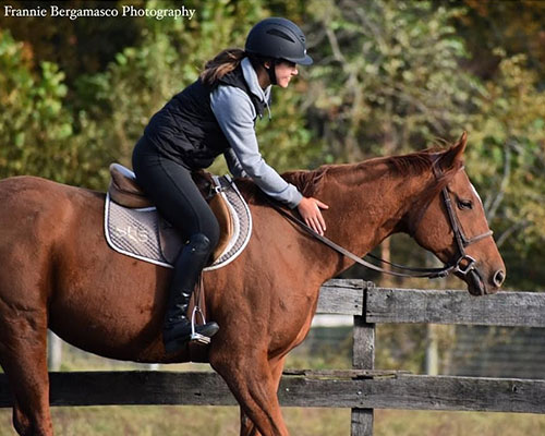 Ridge at Riverview Schooling Show